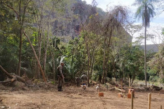 Homem foi autuado e multado em 13 mil reais e vai responder por crime ambiental (Imagem: Divulgação)
