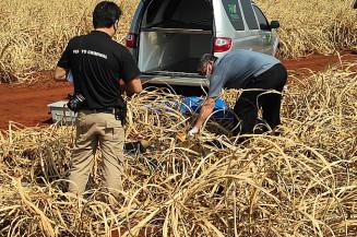 Polícia acredita que corpo encontrado foi desovado há mais de 15 dias (Imagem: Adilson Domingos)