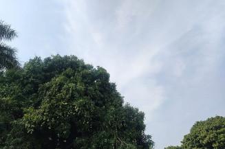 Em Dourados a temperatura varia entre 21 e 33 graus nesta terça-feira e deve ocorrer pancadas de chuvas de 10mm (Imagem: Dourados Informa)