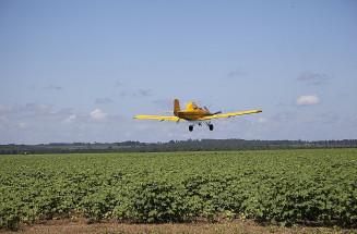 Avião pulveriza agrotóxico em lavoura de Mato Grosso do Sul (Divulgação)