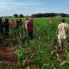 Local onde corpo foi encontrado (Adilson Domingos/Campo Grande News)