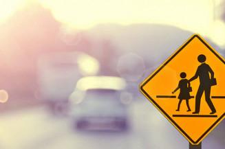 Secretária de Educação defende que o tema precisa estar na rotina escolar. Imagem: (Internet)