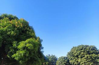 Para Dourados não há previsão de chuva e temperatura varia entre 18 e 28 graus. Imagem (Aliny Fernandes)