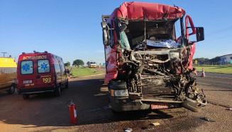 Caminhão carregado de toras é flagrado com mais de 20